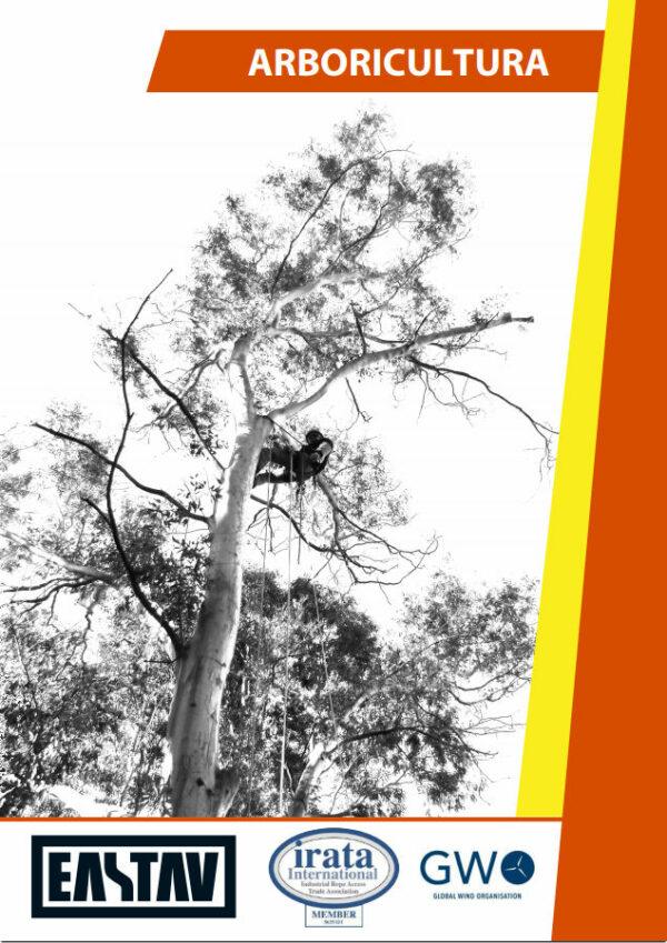 curso trepa y apeo arboricultura eastav